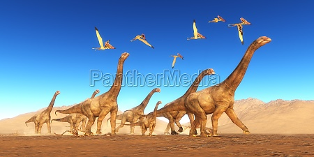 brontomerus dinosaur desert