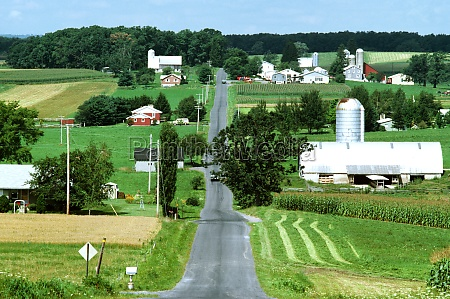 country road and farmland in western