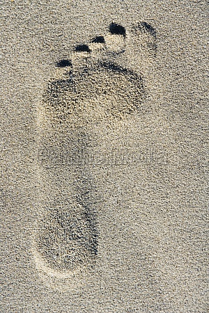close up of a footprint in