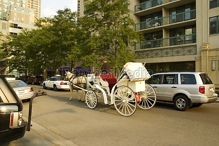 horse cart in front of building