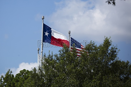 texas and united states flags