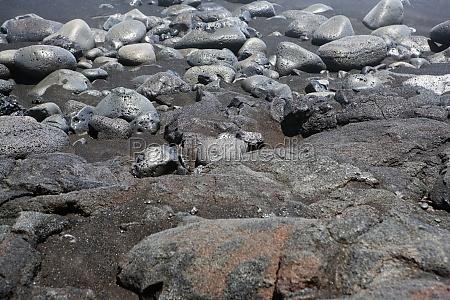 high angle view of stones kalapana