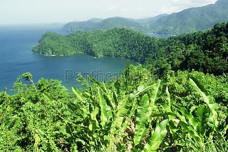 maracas bay is seen beyond a