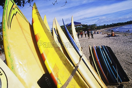 close up of surfboards on the