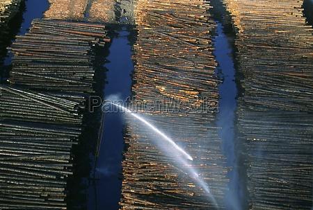 watering logs to reduce heat buildup