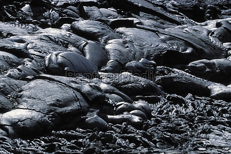 patterns in pahoehoe lava big island