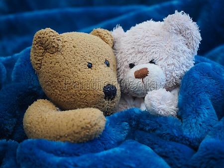 two teddy bears cuddling
