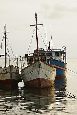 tourboats anchored at the port taganga