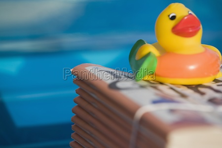 close up of a rubber duck