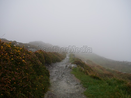 a stony path in the fog