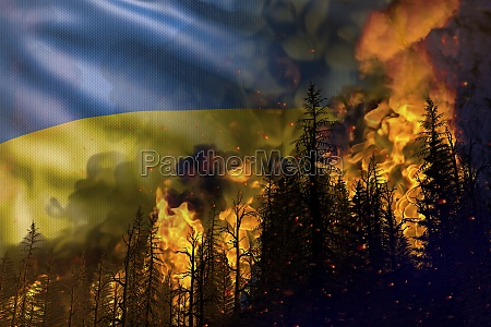 forest fire natural disaster concept