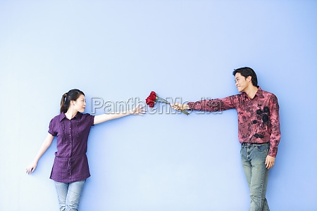 young man giving roses to a