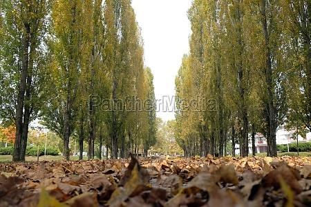 park in malesnica residential area zagreb