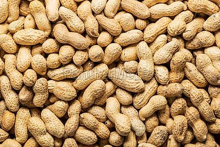 dried peanuts tasty groundnuts