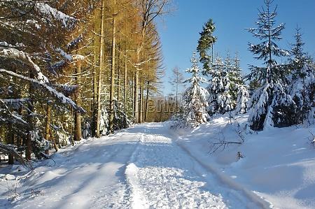 onset of winter in bielefeld eastwestphalia