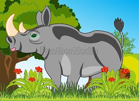 animal rhinoceros on background of the
