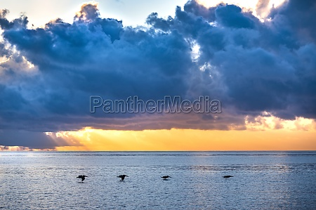 dramatic sunset sky over sea with