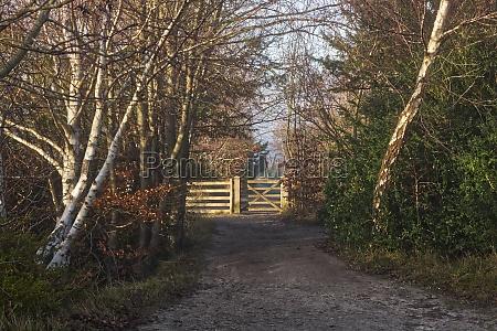 gate at box hill surrey england