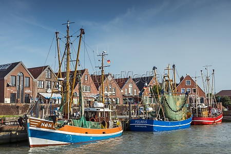 fishing boats in the harbor of