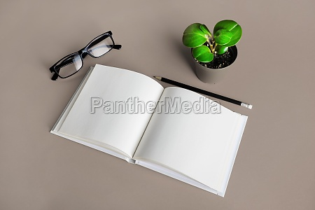 brochure pencil glasses plant