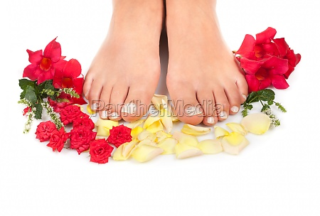 feet qnd roses
