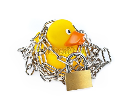 yellow rubber duck with chain and