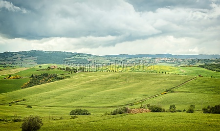 typical landscape of the tuscan hills