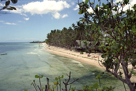 holidays on panglao island on the