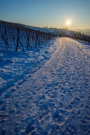 cold winter snow with sun in