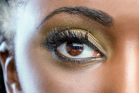 macro close up of african eye
