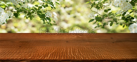 spring blossom with wooden table