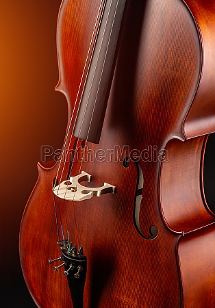 classic stringed musical instrument
