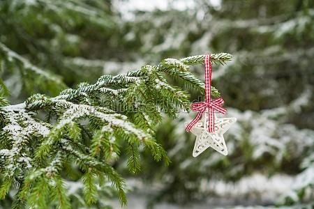 christmas star hanging on the fir