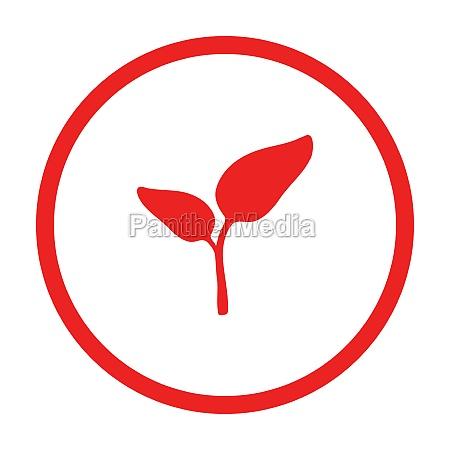 plant and circle