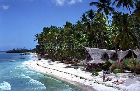 beach of panglao island on the