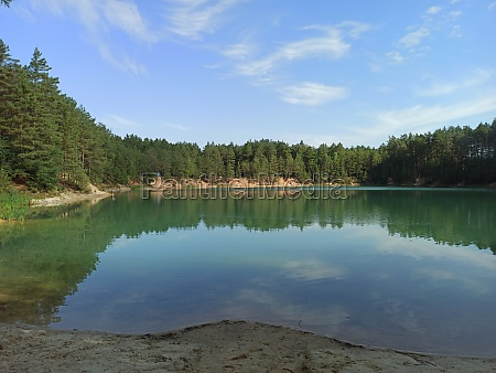 forest lake with emerald water beautiful