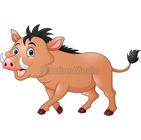 vector illustration of wild boar cartoon