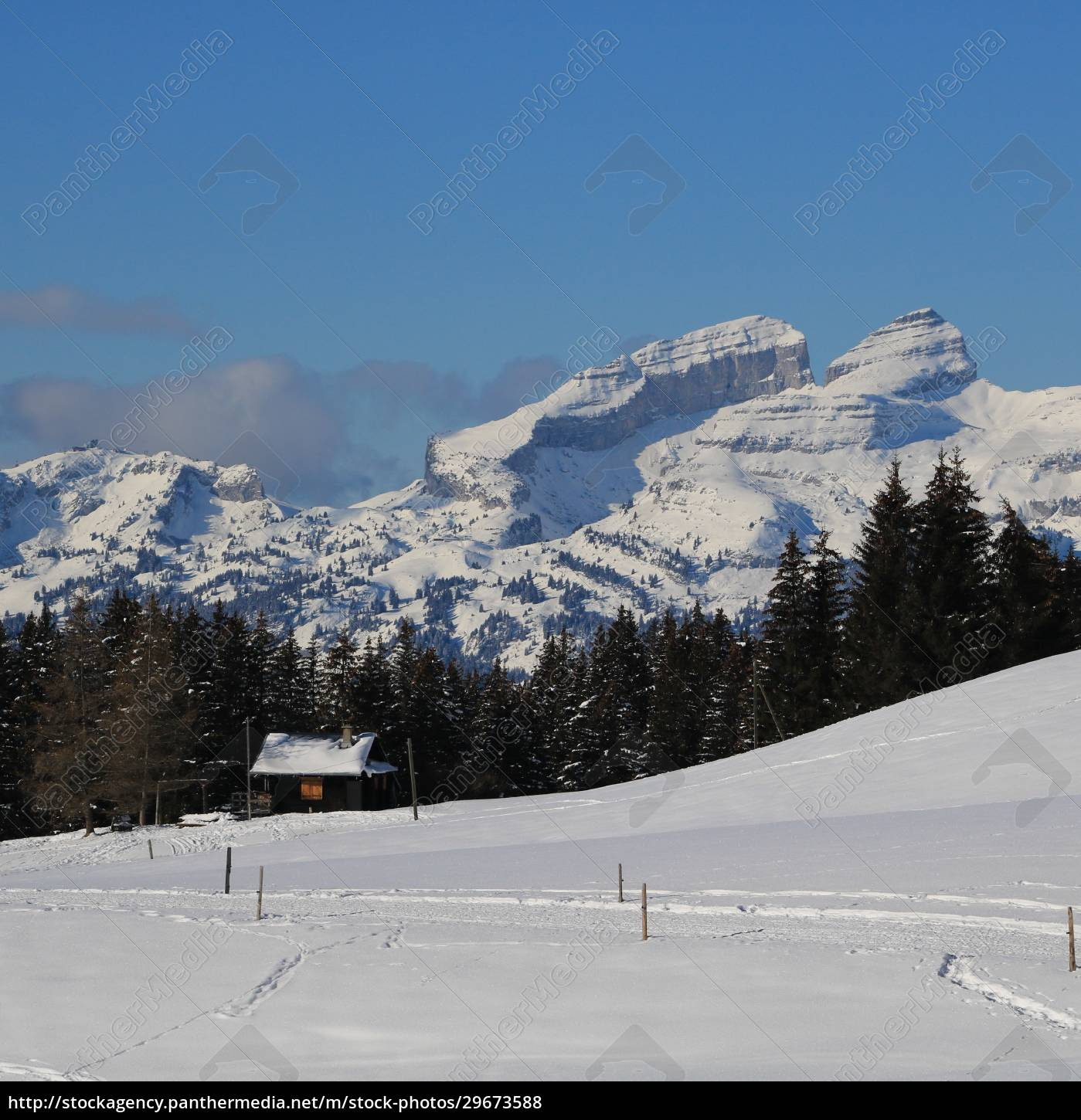snow, covered, mountains, in, vaud, canton, - 29673588
