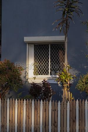 plants outside house in neighbourhood melbourne