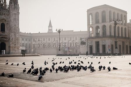pigeons in quiet piazza del duomo