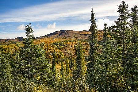 autumn landscape of autumn colours in