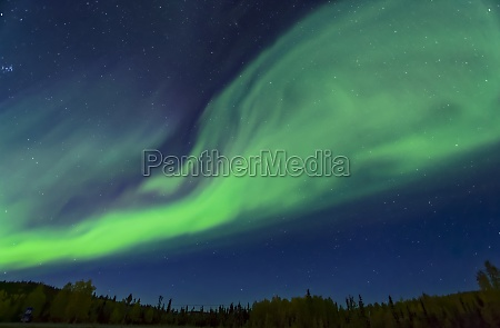 bright green aurora waving across the