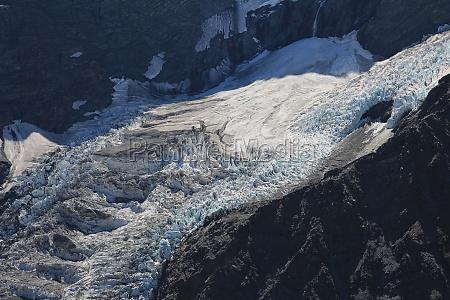 fitzgerald glacier aoraki national park
