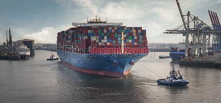 large container vessel in the port