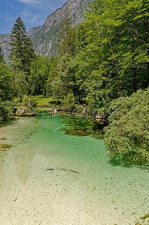 sava bohinjka river in triglav national