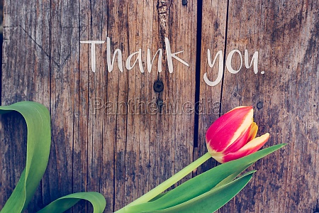 thank you arrangement of colorful tulips