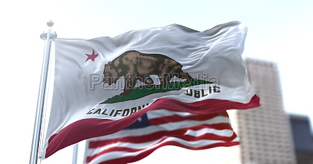 the california republic flag with the