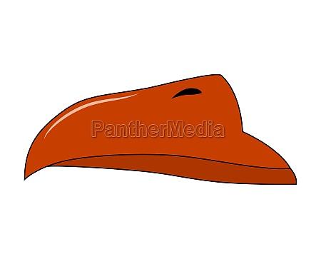 beak of bird vector cartoon illustration