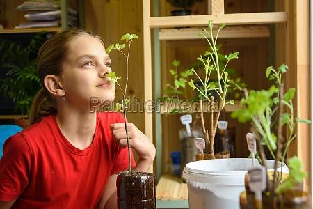 a girl transplants seedlings of garden