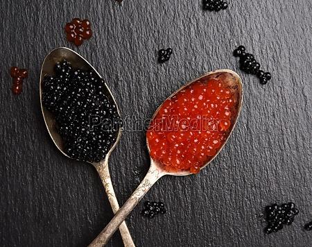 black caviar of paddlefish fish and